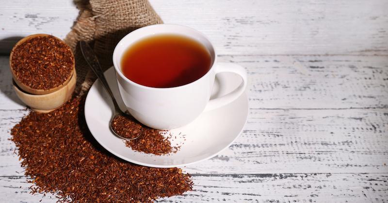 rooibos çayı