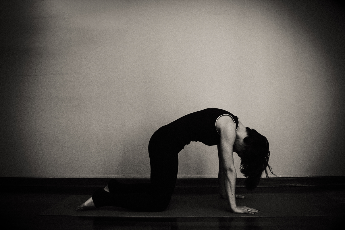 yoga kedi pozu